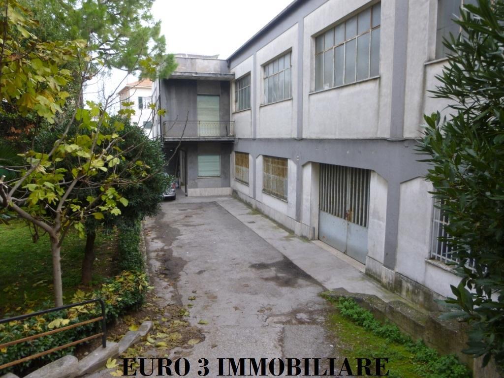 1961 LOCALE COMMERCIALE VENDITA PORTO SANT'ELPIDIO 1