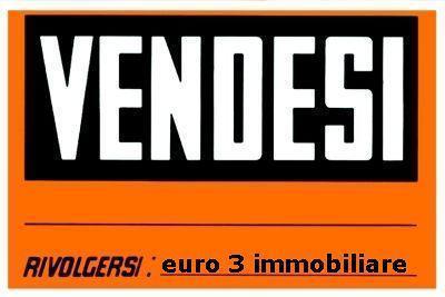 925 TERRENO EDIFICABILE VENDITA SPINETOLI 1